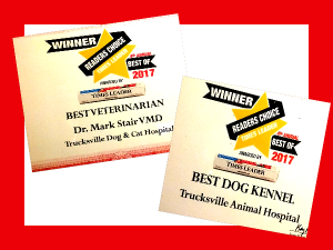 Dr. Stair & The Trucksville Dog & Cat Hospital Win Best Veterinarian & Best Kennel for 2017!