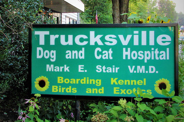 Business Hours for Pet Hospital